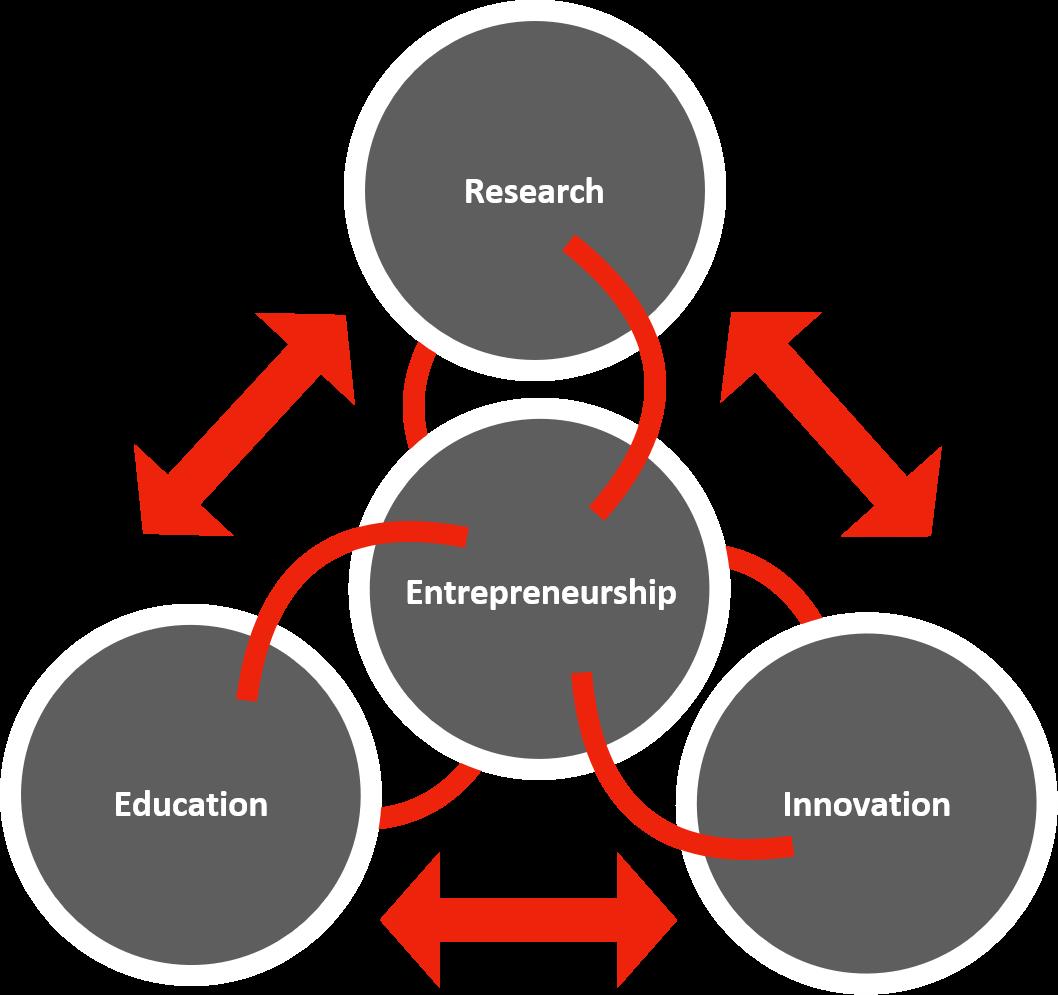 Network Thinking Phase 2 Create